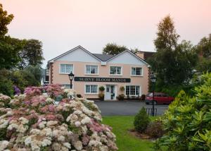 Slieve Bloom Manor Bed & Breakfast