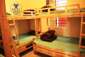 Photo of Spring Rabbit Hostel