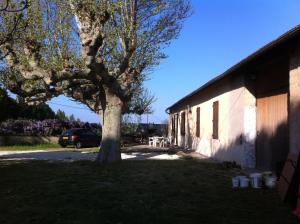 Photo of Temple Farm   18th Century Provençal Farmhouse