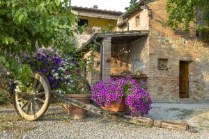 Casa Di Campagna In Toscana, Country houses  Sovicille - big - 115