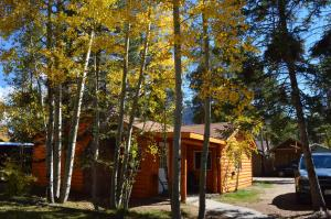 Daven Haven Lodge & Cabins, Chaty v prírode  Grand Lake - big - 11