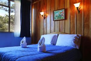 Double  Room with One Double Bed