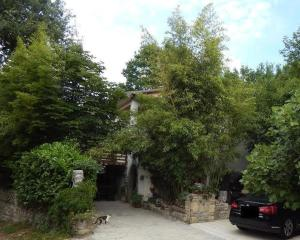 Photo of Apartment Maria