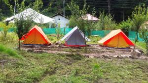 Photo of Pinetree Camps Kasol