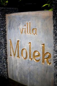 Photo of Villa Molek