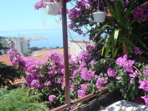Apartments Dobrinic: hotels Makarska - Pensionhotel - Hotels