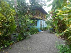Photo of Blue Morpho Beach House