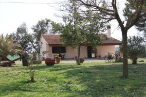Agriturismo da Remo, Farm stays  Magliano in Toscana - big - 22