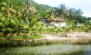 La Mami River Beach   Caribean House