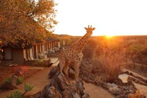 Photo of Okutala Etosha Lodge