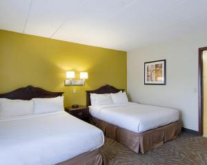 Suite - Two Double Beds