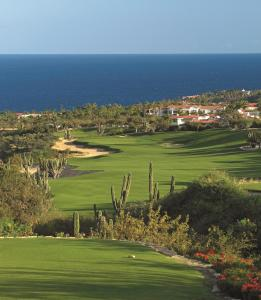 One&Only Palmilla - 15 of 54