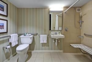 King Room - Disability Access/ Roll- In Shower