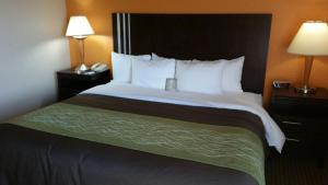 Suite Business con cama extragrande - Fumadores