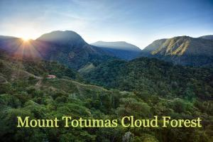 Photo of Mount Totumas Cloud Forest