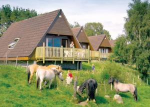 Delny Highland Lodges in Invergordon, Highland, Scotland
