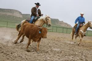 Photo of Colorado Cattle Company And Guest Ranch