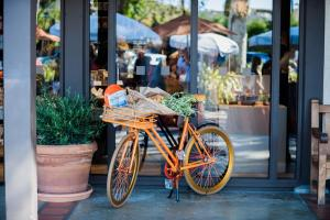 The Garland - 38 of 43