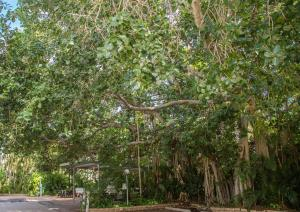 Southside Holiday Village, Ferienparks  Rockhampton - big - 36