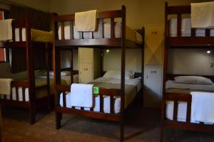 Single Bed in 10-Bed Female Dormitory Room