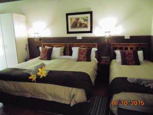 Double or Twin Room - Rhino