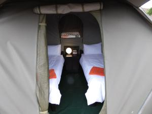 Bed in 10-Bed Dormitory Tent