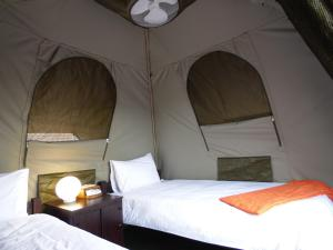 Bed in 12-Bed Female Dormitory Tent