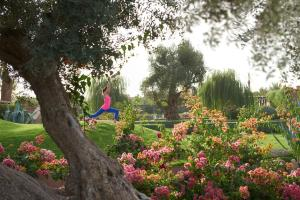 Mandarin Oriental, Marrakech - 20 of 41