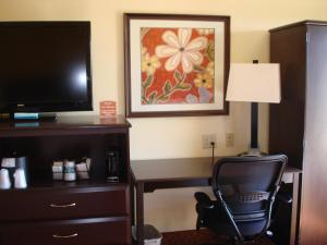 Best Western Plus Orlando Convention Center Hotel - Orlando, FL 32821 - Photo Album