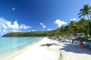 Photo of Halcyon Cove By Rex Resorts