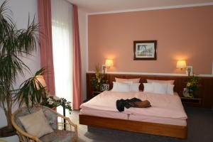 Hotel Dorotheenhof, Hotels  Cottbus - big - 40