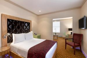 Premier Club Suite met Queensize Bed - Rookvrij
