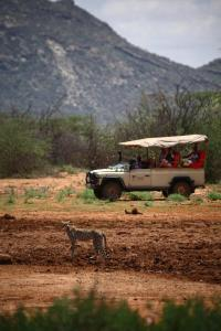 Saruni Samburu Lodge (40 of 84)