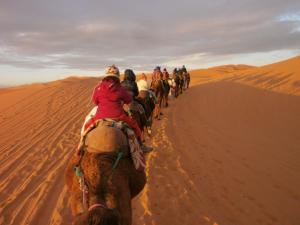 Camel Trek Bivouac, Luxury tents  Merzouga - big - 8