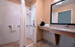 Queen Suite - Disability Access Roll in Shower/Non-Smoking