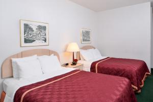 Queen Room with Two Queen Beds - Non-Smoking - Pet Friendly