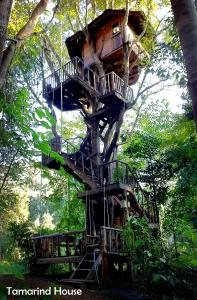 Photo of Rabeang Pasak Tree House