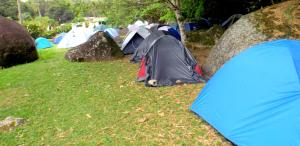 Shared Tent