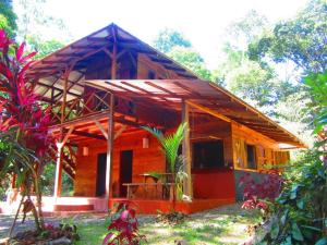 Photo of Jungle House On Rio Cano Negro