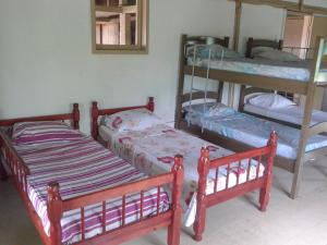 Single Bed in 7 Male Dormitory Room