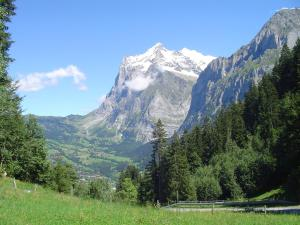 Tschuggen Apartment - No Kitchen, Apartments  Grindelwald - big - 18
