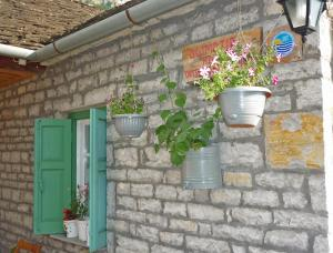 Photo of Guesthouse Iro