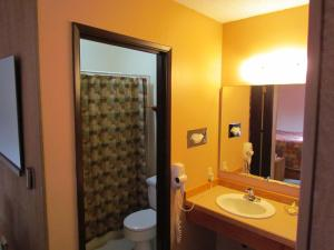 Deluxe One- Bedroom Queen Suite - 205 (Not Pet Friendly Room)