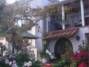 The Black Orchid Bed and Breakfast