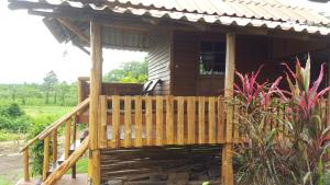 ChiangDao Country Retreat, Venkovské domy  Chiang Dao - big - 45