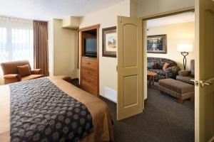 Deluxe One-Bedroom King Suite