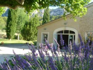 Photo of B&B Les Argiles