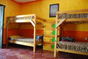 Bunk Bed in a Female Dormitory room