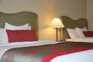 Double Room with Two Double Beds - Disability Access/Non-Smoking