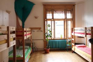 DownTown Hostel, Hostely  Temešvár - big - 87